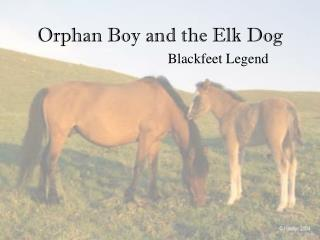 Orphan Boy and the Elk Dog