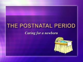 The Postnatal Period
