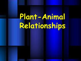 Plant-Animal Relationships