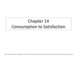 Chapter 14 Consumption to Satisfaction