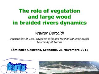 The role of  vegetation  and large wood  in  braided rivers dynamics Walter  Bertoldi