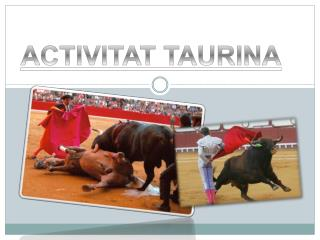 ACTIVITAT TAURINA