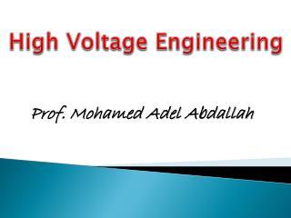 Prof. Mohamed Adel Abdallah