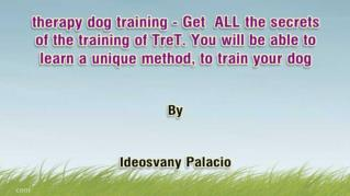 ppt 32692 therapy dog training Get ALL the secrets of the training of TreT You will be able to learn a unique method to