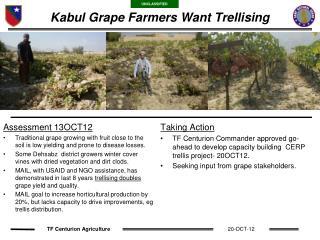 Kabul Grape Farmers Want Trellising