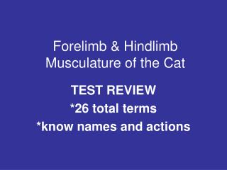 Forelimb & Hindlimb Musculature of the Cat