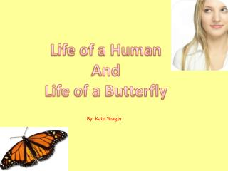 Life of a Human  And  Life of a Butterfly