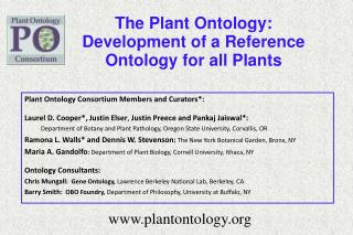 The Plant Ontology: Development of a Reference Ontology for all Plants