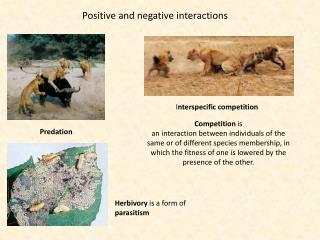 Positive and negative interactions