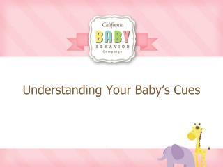 Understanding Your Baby's Cues