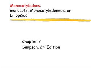 Monocotyledons :  monocots,  Monocotyledoneae , or  Liliopsida