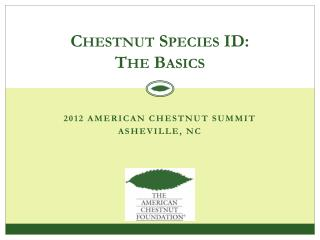 Chestnut Species ID: The Basics