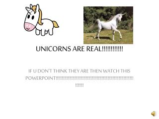 UNICORNS ARE REAL!!!!!!!!!!!!