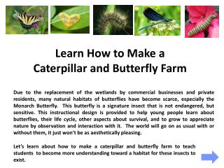 Learn How to Make a  Caterpillar and Butterfly Farm