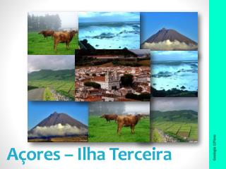 Açores – Ilha Terceira
