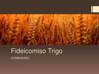 Fideicomiso Trigo
