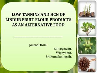 LOW TANNINS AND HCN OF LINDUR FRUIT FLOUR PRODUCTS AS AN ALTERNATIVE  FOOD