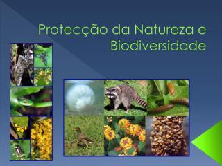 Protecção da Natureza e Biodiversidade