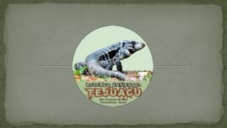 Reserva Ambiental  Tejuacu