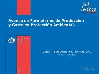 Avance en  Formularios de  Producción  y Gasto  en Protección  Ambiental.
