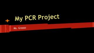 My PCR  Project