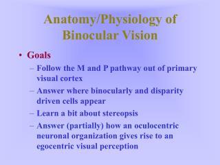 AnatomyPhysiology of Binocular Vision