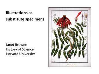 Janet Browne History of Science Harvard University