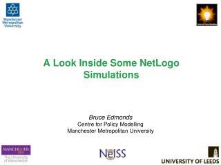 A Look Inside Some NetLogo Simulations