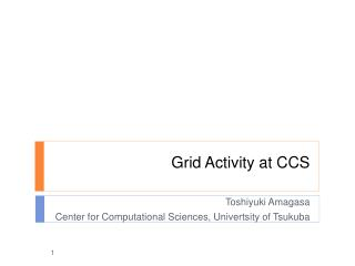 Grid Activity at CCS