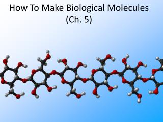 How To Make Biological Molecules (Ch. 5)