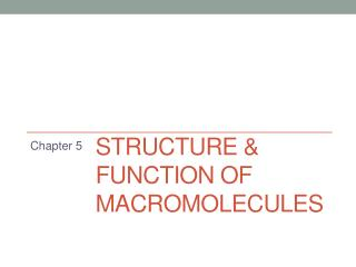 Structure & Function of Macromolecules