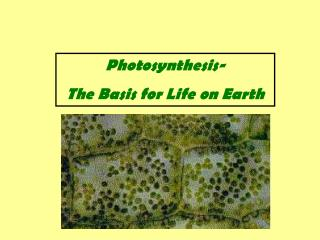 Photosynthesis- The Basis for Life on Earth