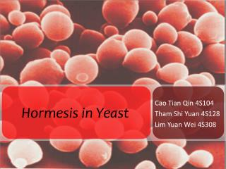 Hormesis  in Yeast