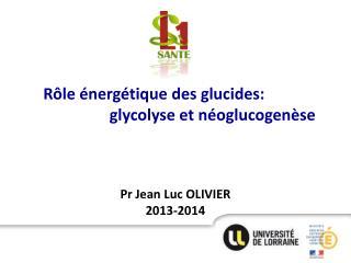 Pr Jean Luc OLIVIER 2013-2014