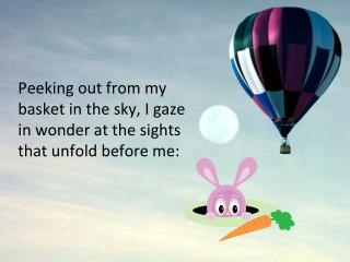 Peeking out from my basket in the sky, I gaze in wonder at the sights that unfold before me:
