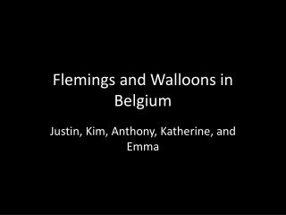 Flemings and Walloons in Belgium