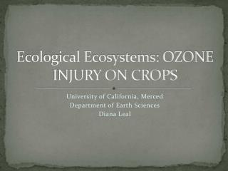 Ecological Ecosystems: OZONE INJURY ON CROPS