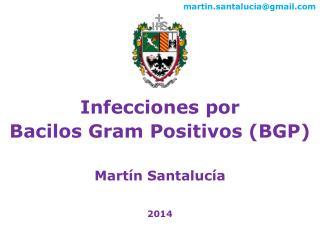 Infecciones por  Bacilos  Gram  Positivos (BGP) Martín Santalucía 2014