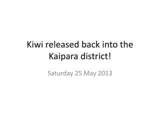 Kiwi released back into the  Kaipara  district!