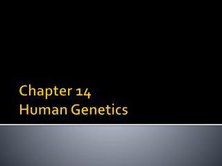 Chapter 14 Human Genetics