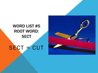 Word list #5 root word:          sect