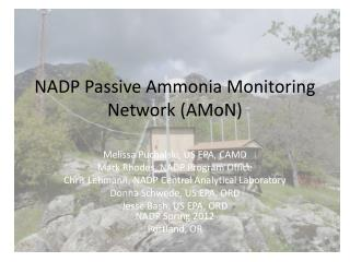 NADP Passive Ammonia Monitoring Network ( AMoN )