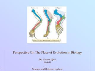 Underlying Biology