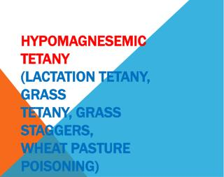 HYPOMAGNESEMIC TETANY (LACTATION TETANY, GRASS TETANY, GRASS STAGGERS, WHEAT PASTURE POISONING)