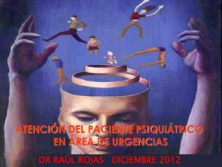 DR RAÚL ROJAS   DICIEMBRE 2012