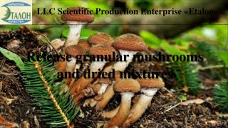 LLC Scientific Production Enterprise  � Etalon � �