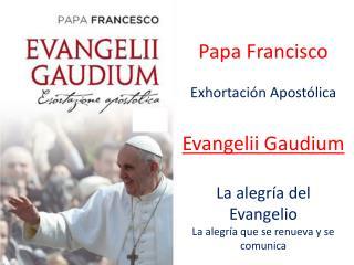 Papa Francisco Exhortación Apostólica Evangelii Gaudium La alegría del Evangelio
