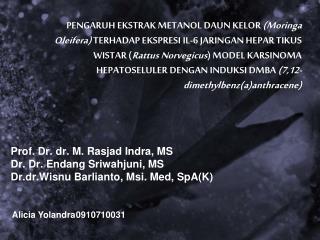Alicia  Yolandra 0910710031