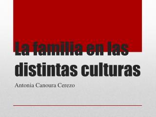 La familia en las distintas culturas
