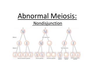 Abnormal  Meiosis : Nondisjunction